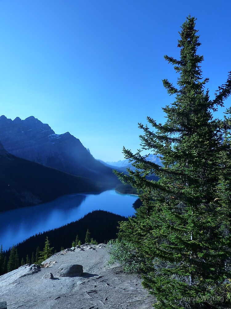 Peyto Lake by Jennie Whiting