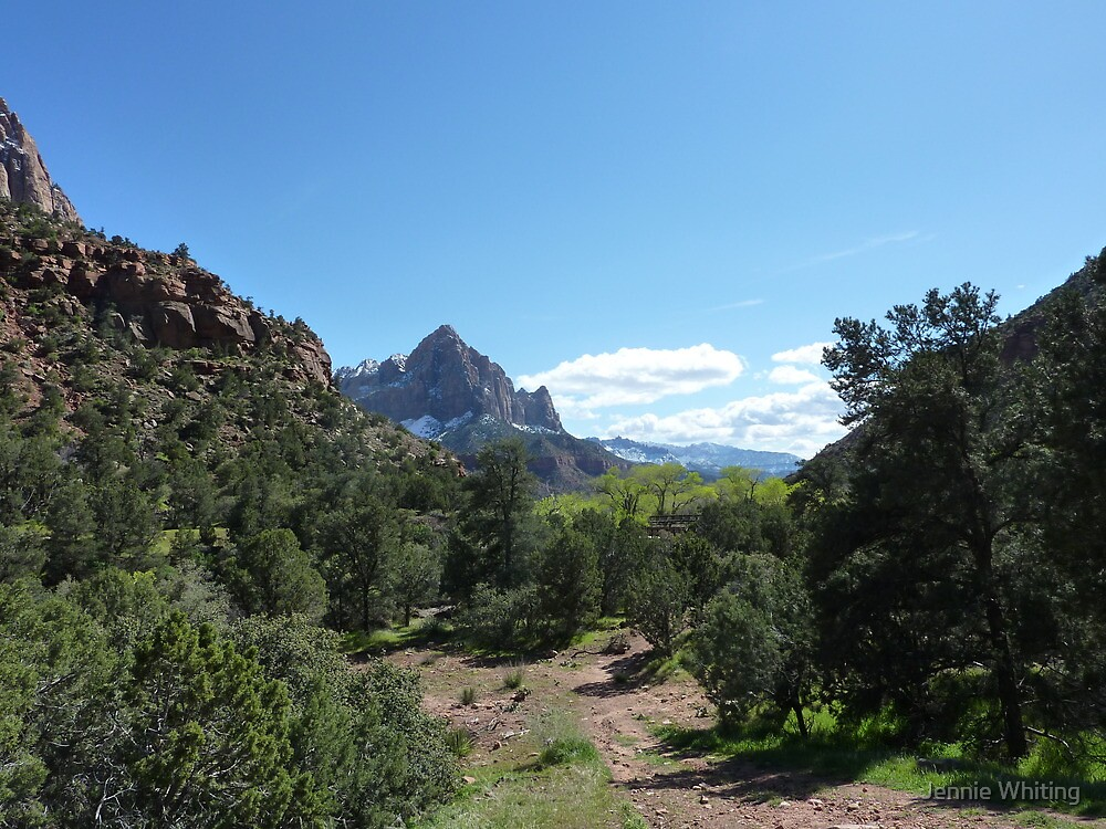 Zion National Park by Jennie Whiting