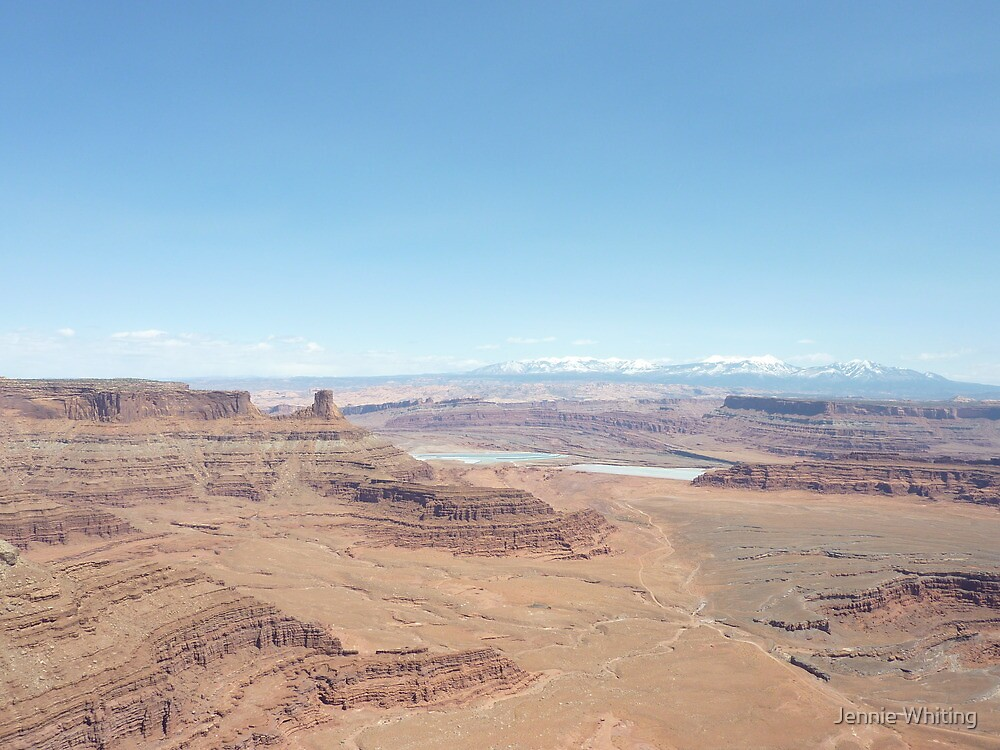 Dead Horse Point by Jennie Whiting