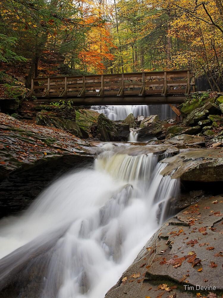 Crossing Kitchen Creek in Autumn by Tim Devine