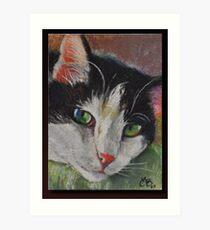 Original Pastel on Wallis Sanded Pastel Paper Art Print