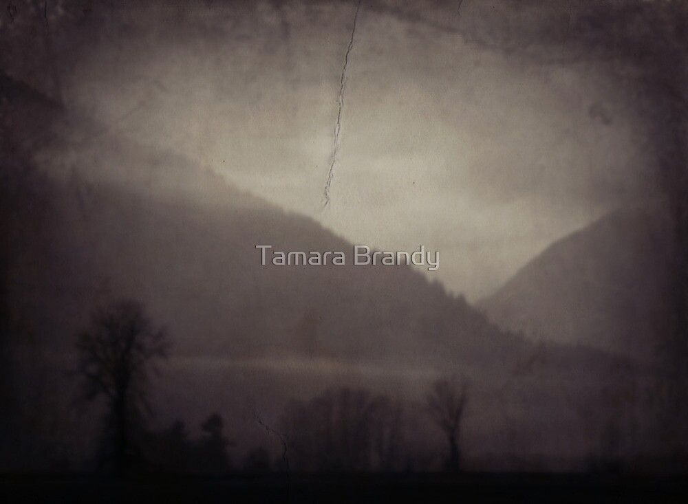 Somewhere over the Mountain  by Tamara Brandy