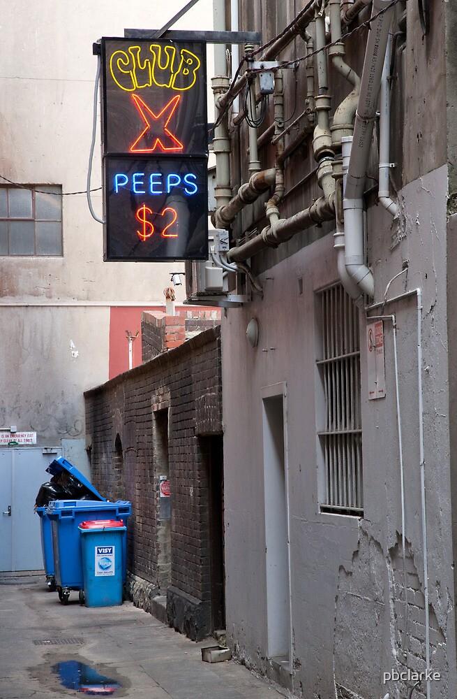 Alley by pbclarke