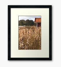 South Koster Island Framed Print