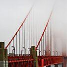 Golden Gate Bridge in Fog by Robyn Carter
