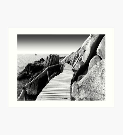 Staggering Wooden Path in Black and White Art Print