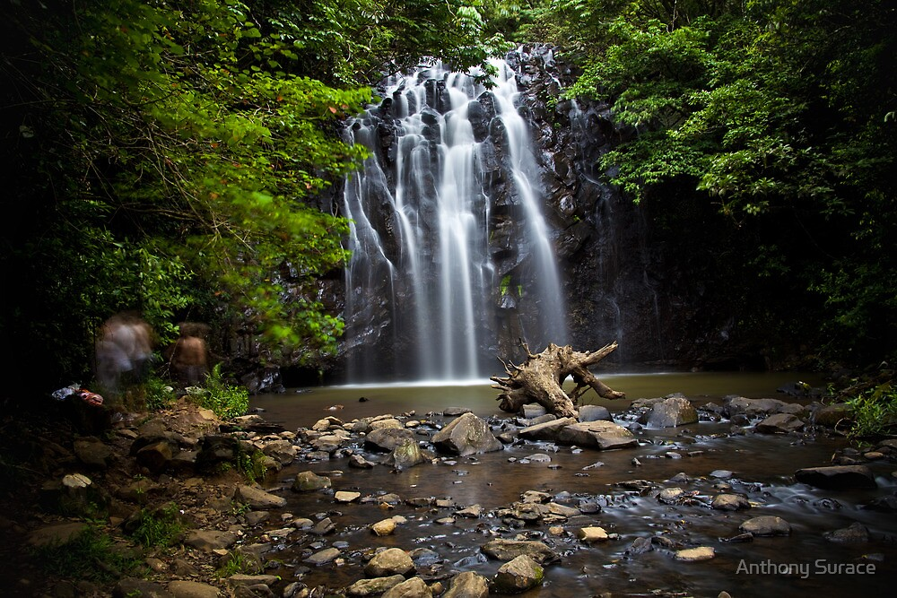 Perfect Falls by Anthony Surace