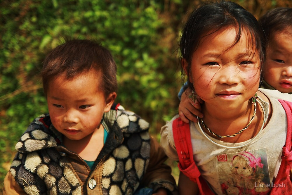 vietnam by Lionelbush