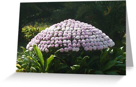 Leaves happily dancing around a purple mushroom by Joseph Green