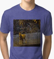 Abstract foal in gold and black Tri-blend T-Shirt