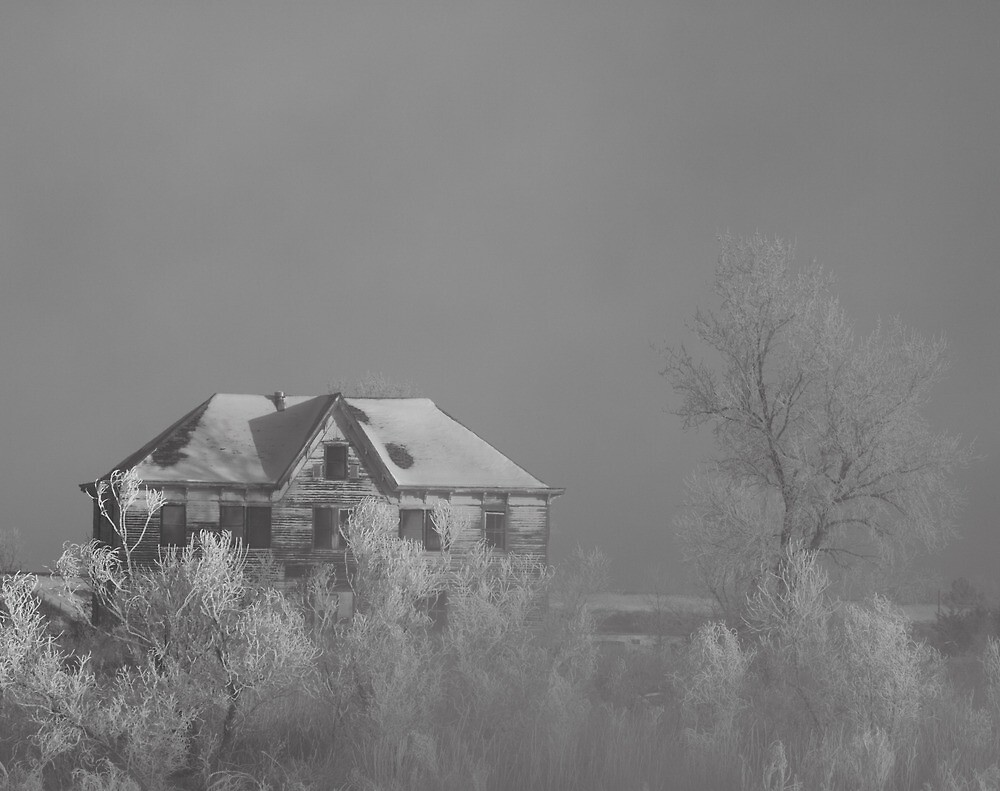 Cold and Abandoned by Leslie Guinan
