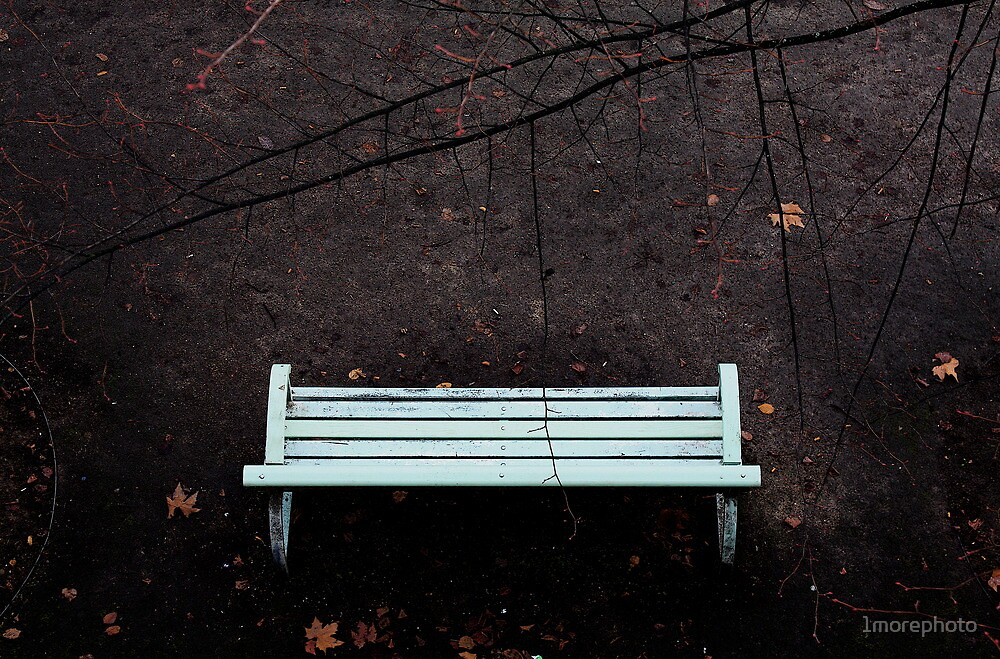 Winter - Bench - Lovers - waiting for the perfect instant ..... by 1morephoto
