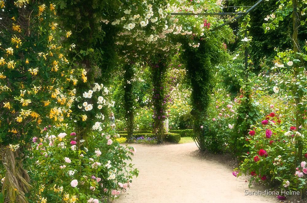 Rose Garden at Alnwick by Sarah-fiona Helme