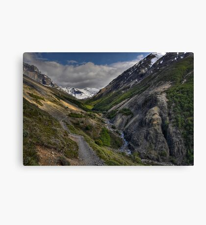 The Valley of Torres del Paine Canvas Print