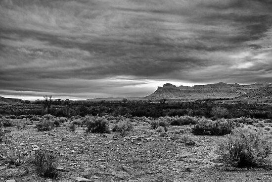 The Open Range by Rick Louie