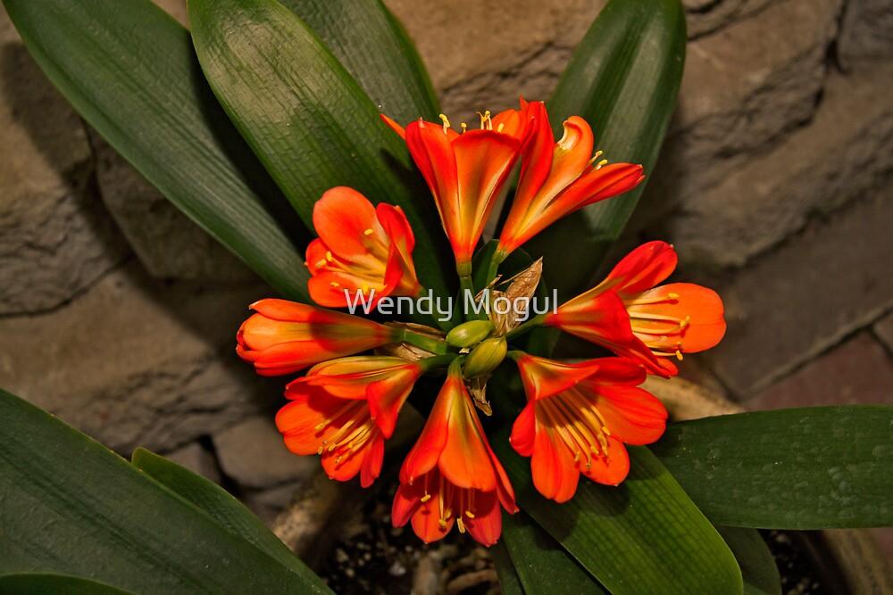 Botanical by Wendy Mogul
