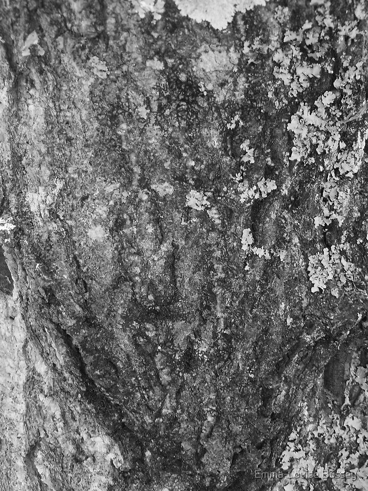 Mouldy Bark by Emma-Louise Bussey