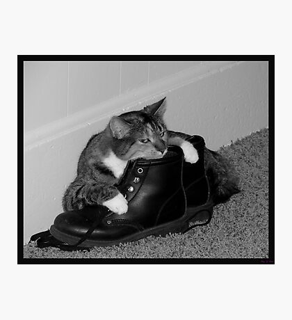 Long Day's work..time to relax on mom's boots~!!! Photographic Print