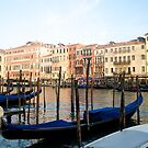 Venice grand canal italy at Dusk by grorr76