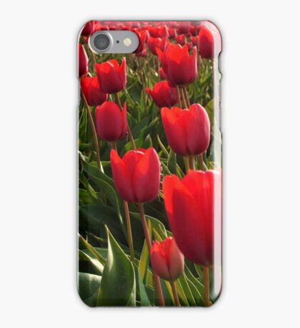 A field full Red Tulips iPhone Case/Skin
