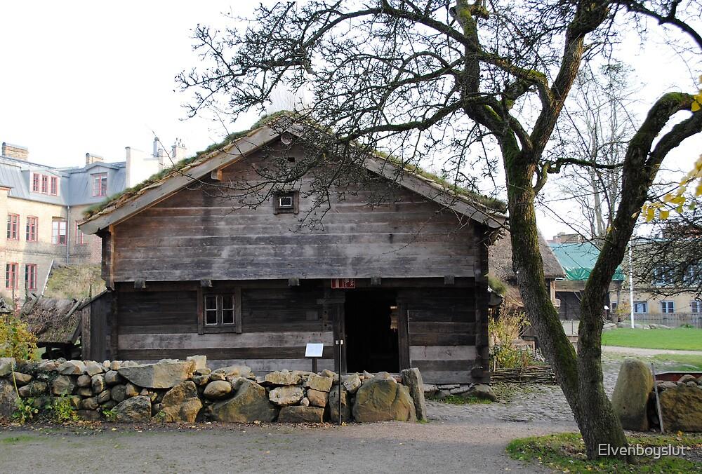 Historic House 2 by Elvenboyslut
