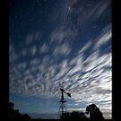 Stars by Peter Doré