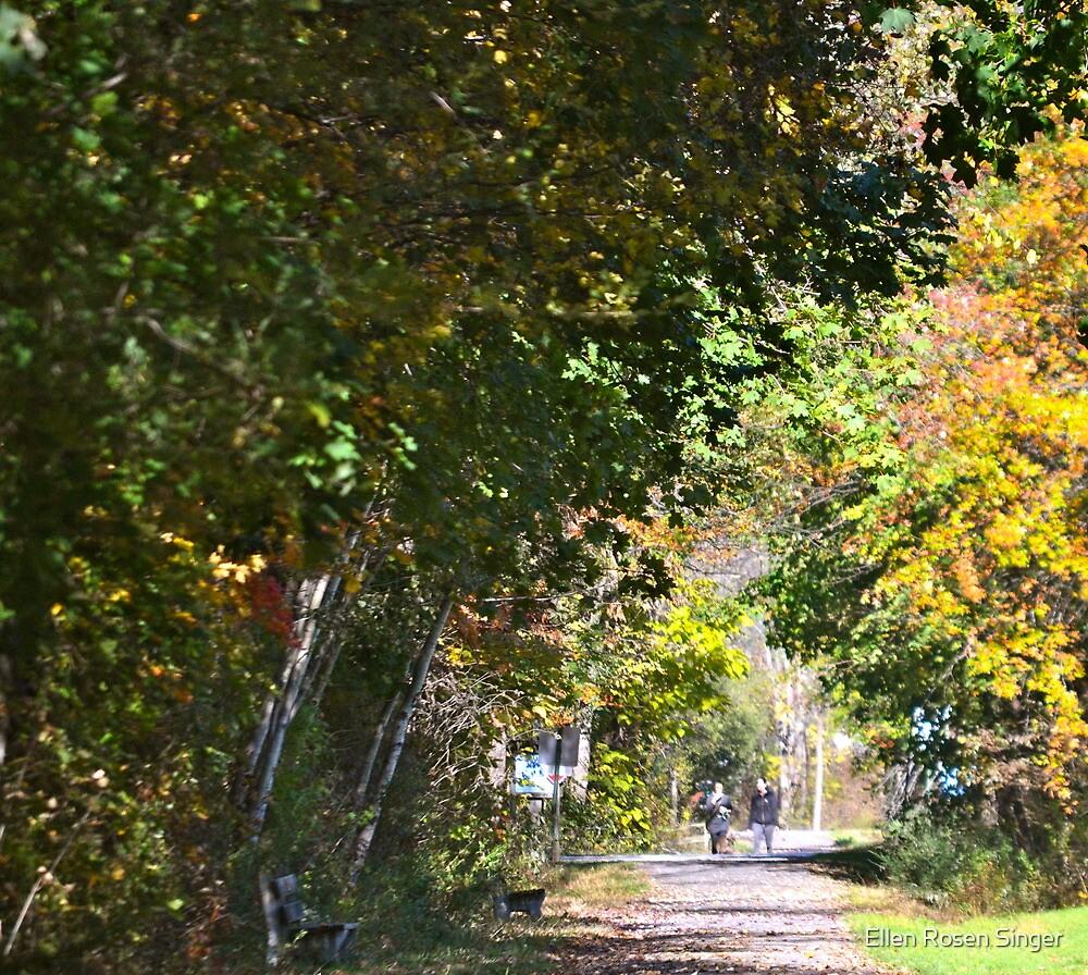 Glow of Autumn 2 by Ellen Rosen Singer