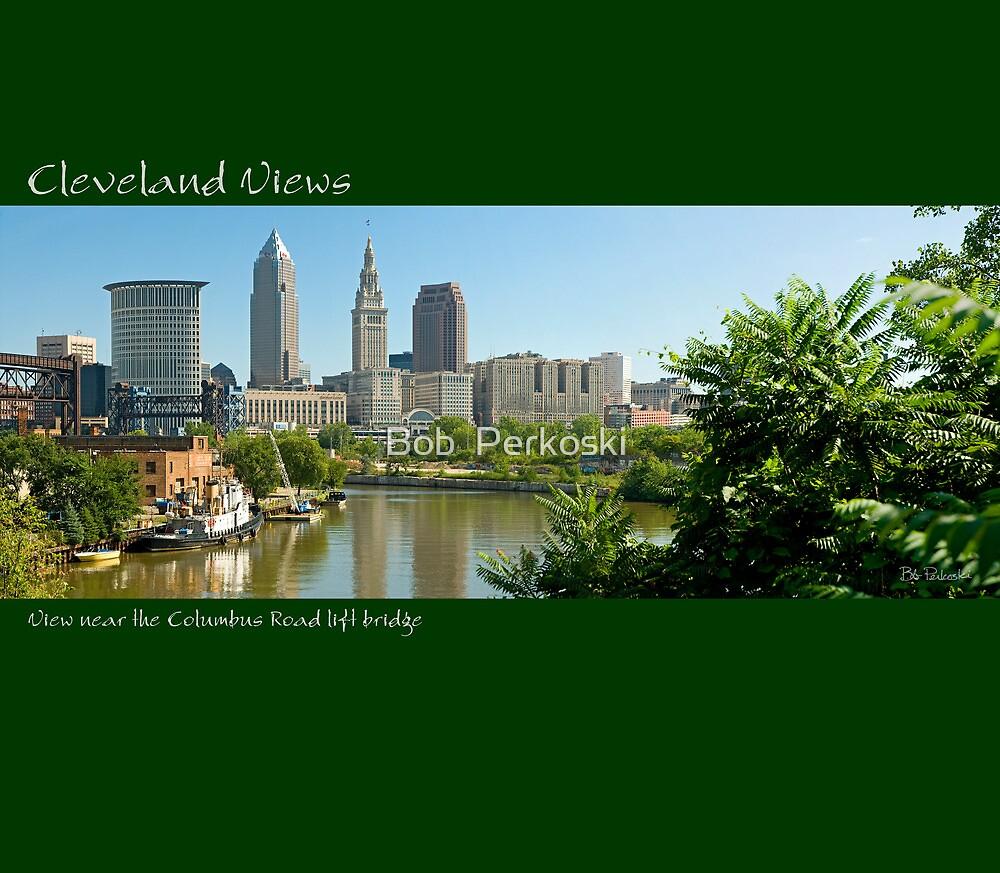 View of Cleveland near the Columbus Rosd Lift Bridge by Bob  Perkoski