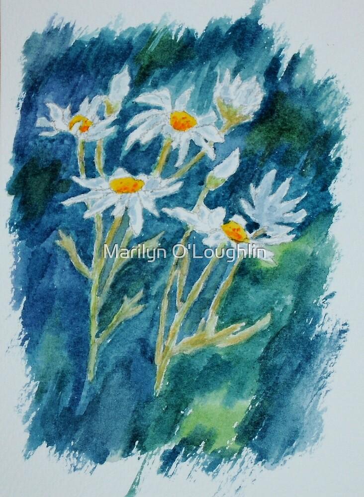 Tall Daisies by Marilyn O'Loughlin