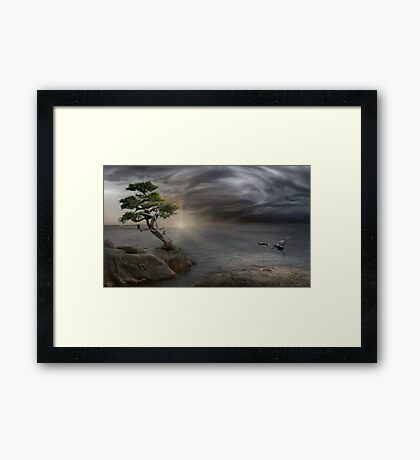 WYCLIFFE PARK Framed Print
