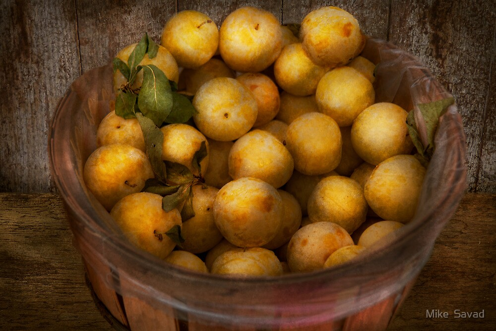 Food - Apples - Golden apples by Mike  Savad