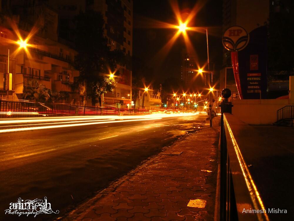 Busy Night by Animesh Mishra