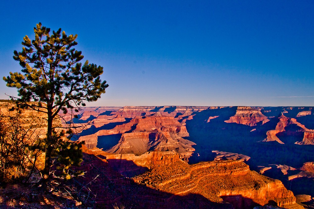 Grand Canyon;  South Rim at Sunrise3 by Marvin Mast