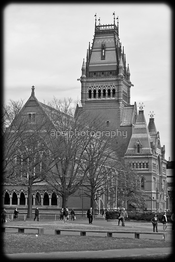 At Harvard by apsjphotography