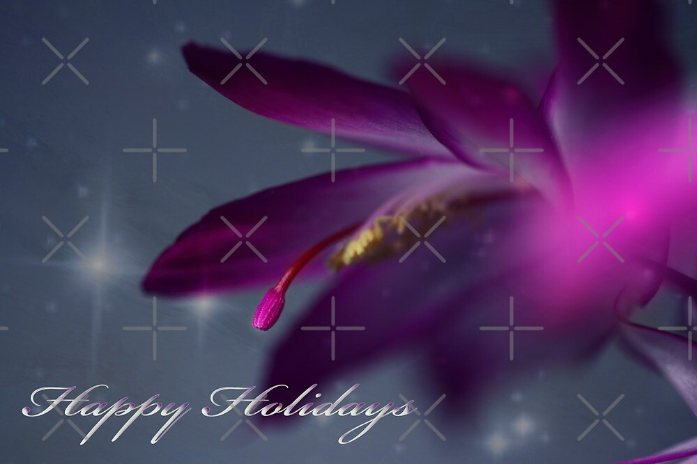 Greeting Card with  Christmas Cactus Flower by EbyArts