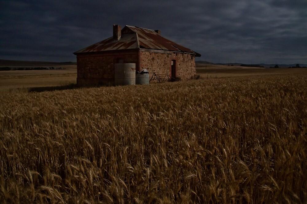 Burra Homestead Ruin in Moonlight by pablosvista2