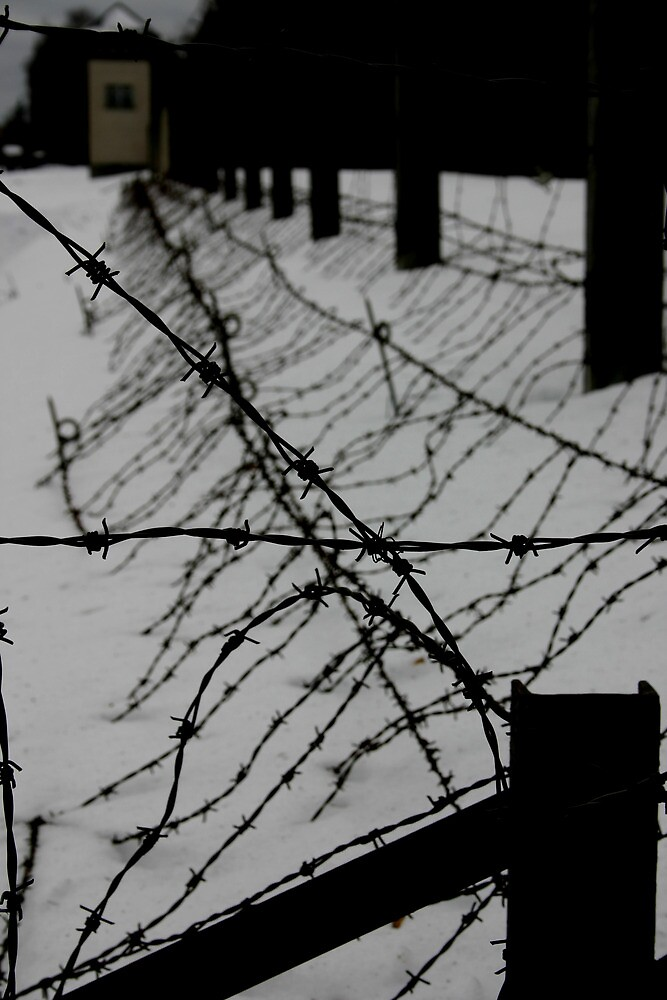 Through the Wire by KathMaster