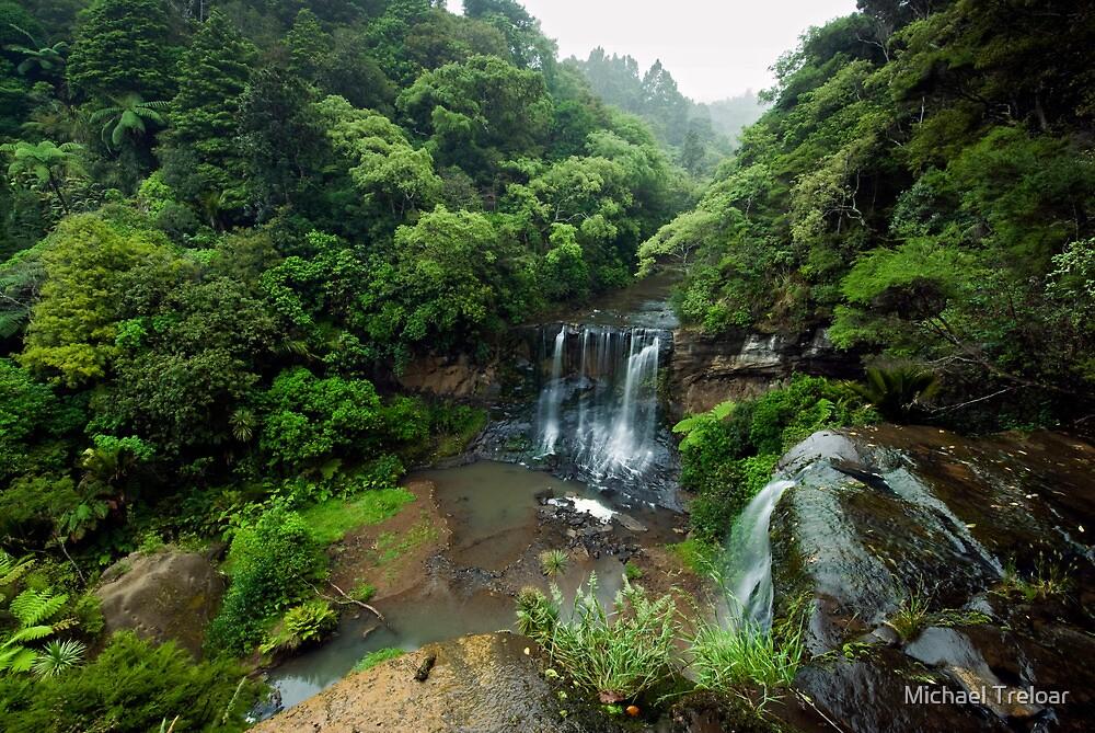 Mokoroa Falls Collection # 1 by Michael Treloar