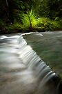 Mokoroa Falls Collection # 7 by Michael Treloar