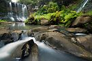 Mokoroa Falls Collection # 3 by Michael Treloar