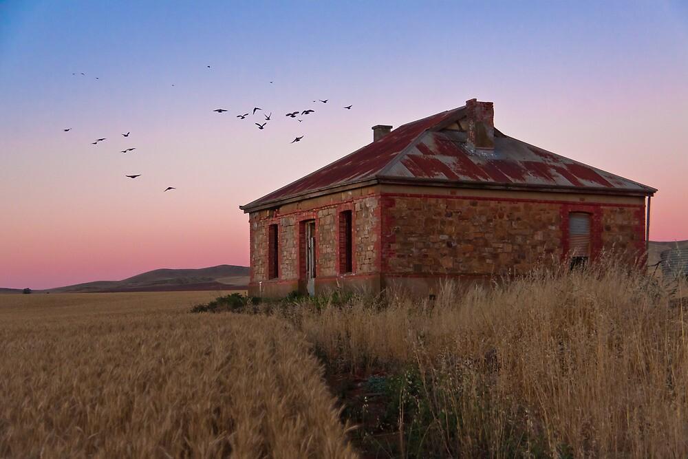 Burra Homestead Ruin & Twilight Birds by pablosvista2