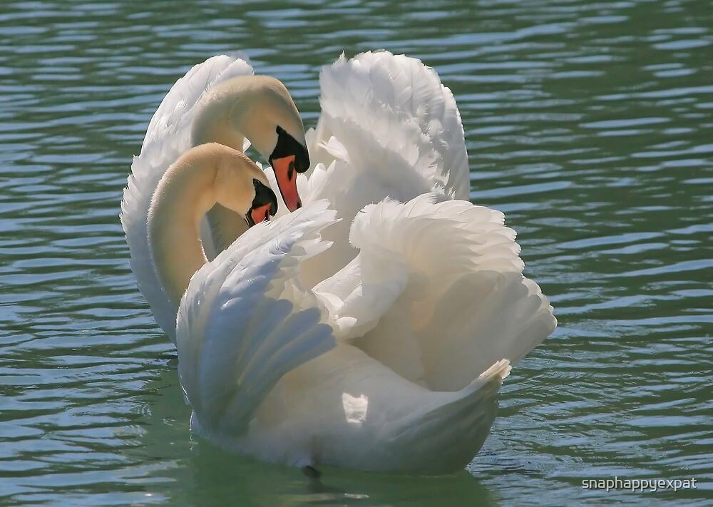 Swan Lake by snaphappyexpat