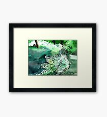Touch of light 1 Framed Print