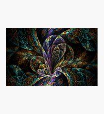Floral Split Crops Photographic Print