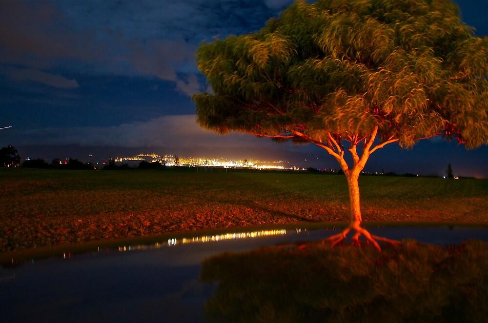 Red Tree by Sebastian Sayegh