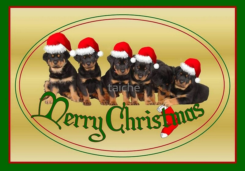 Quot Cute Merry Christmas Rottweiler Puppies Quot Greeting Cards