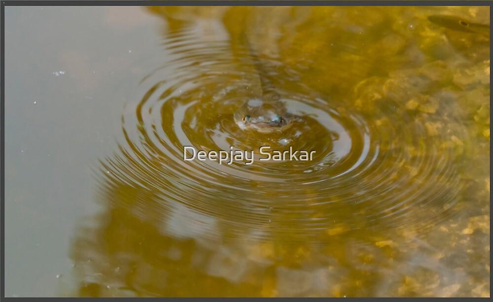 Untitled by Deepjay Sarkar