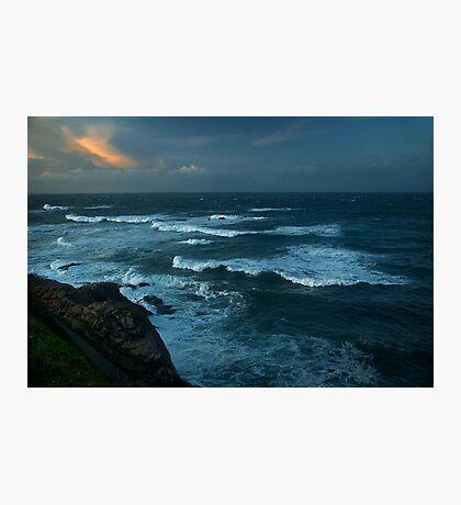 Lizard Surf Photographic Print