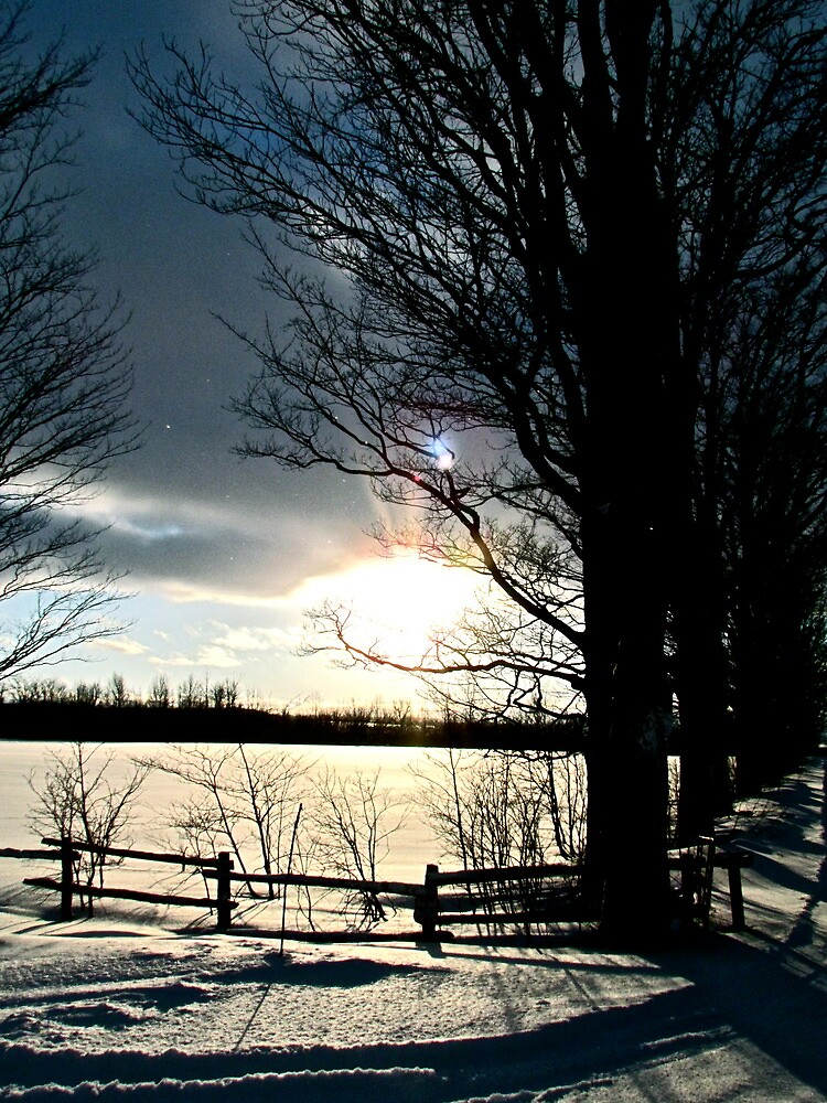 Solitary Winter Twilight by Jessica Bradford
