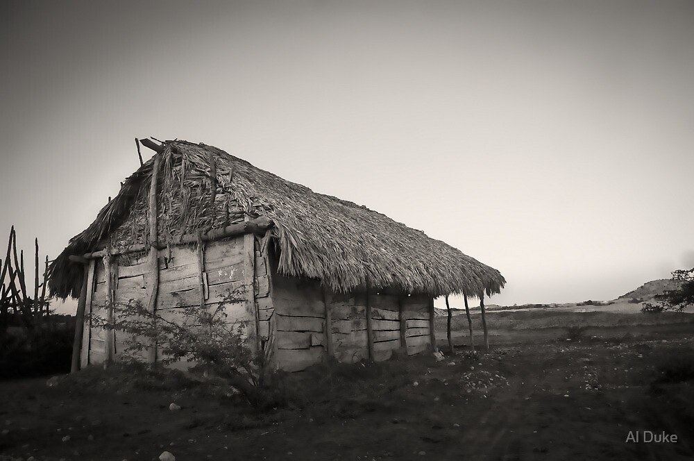 Home In Haiti by Al Duke